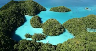 Taiwan-Palau travel bubble expected to open in April | Taiwan News